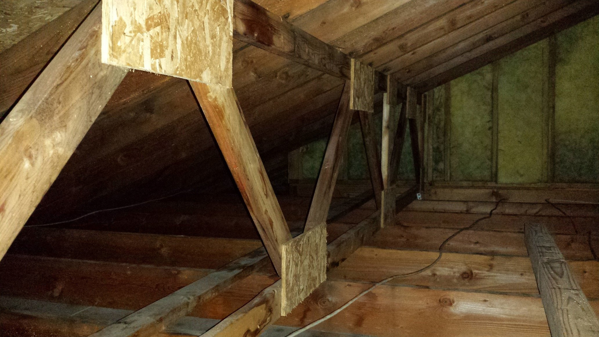 What Causes Attic Mold Moldmanusa
