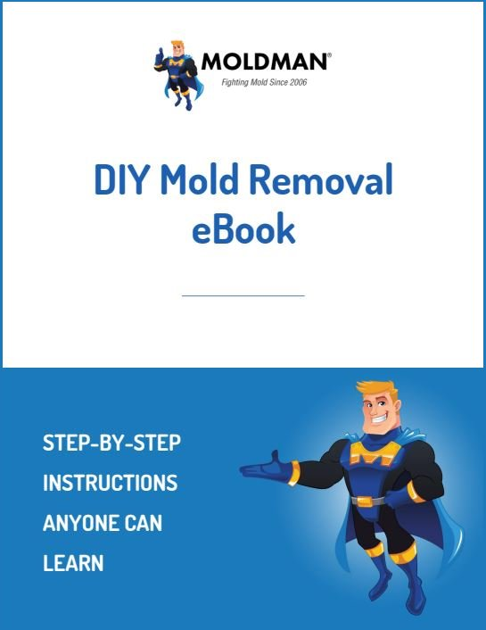 DIY Mold Removal eBook